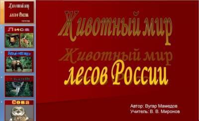 Тему животный мир лесов россии 1 60mb